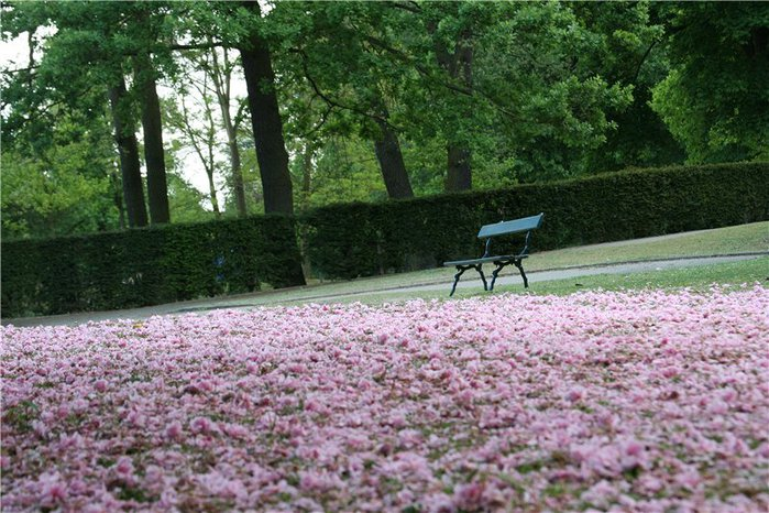 Bois de Boulogne4 (700x466, 109Kb)
