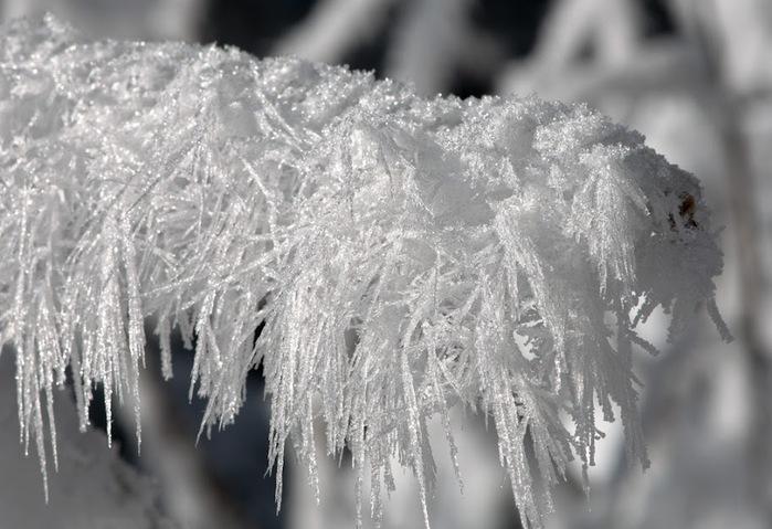 Ах, зима, зима... 80732