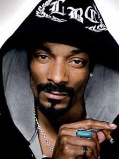 Однажды Snoop Dogg попытался арендовать всю страну Лихтенштейн для съёмок клипа (240x320, 29Kb)