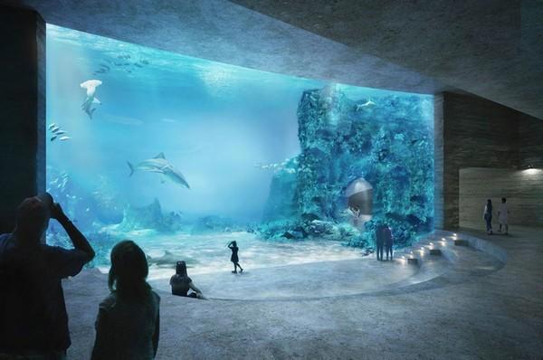 аквариум в базеле фото 1 (600x398, 58Kb)