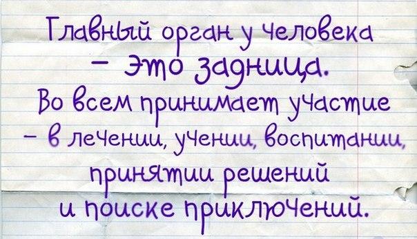 http://img1.liveinternet.ru/images/attach/c/7/95/316/95316139_prikolnuye_frazuy_v_kartinkah.jpg