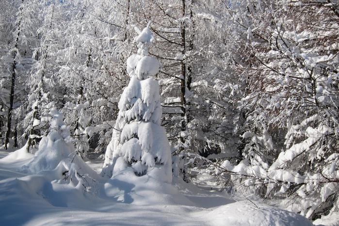 Ах, зима, зима... 83436