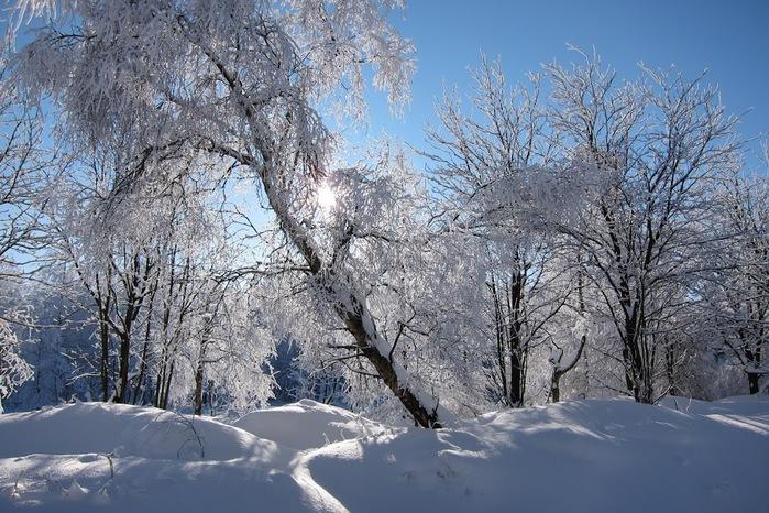 Ах, зима, зима... 37933