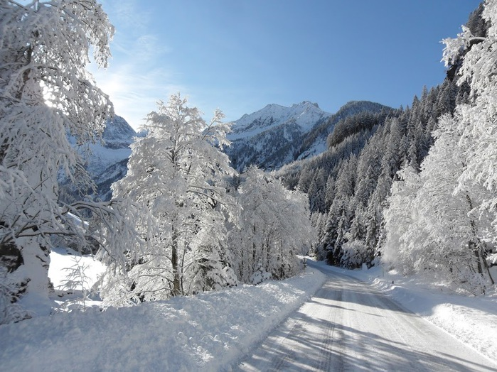 Ах, зима, зима... 22201