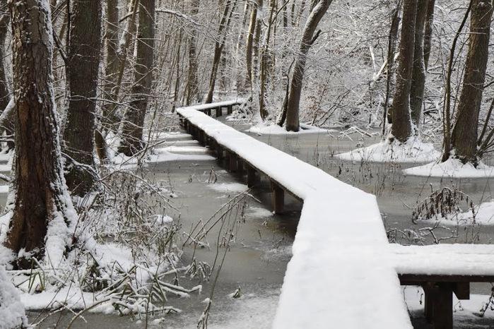 Ах, зима, зима... 46262