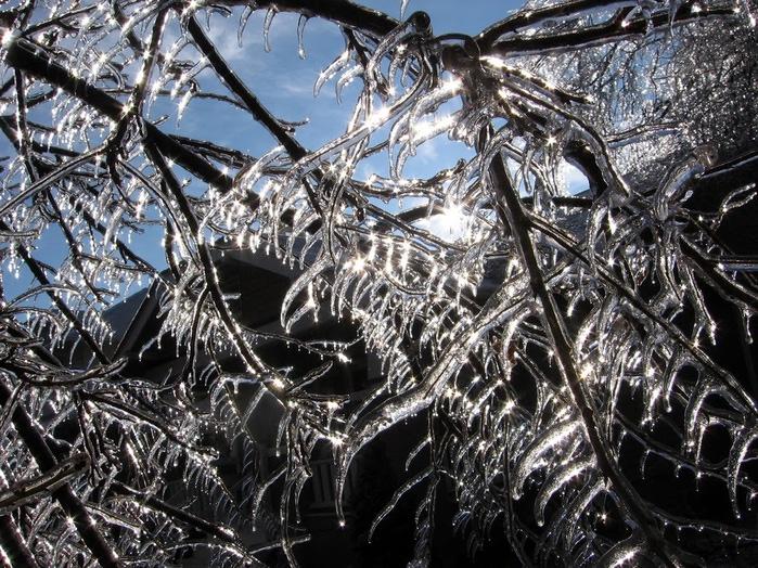 Ах, зима, зима... 97294