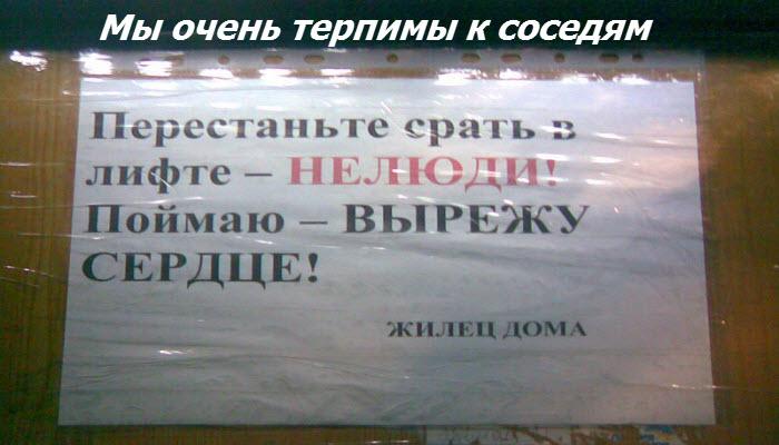 photo_212 (700x400, 70Kb)