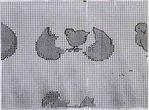 Превью oufs 4 (605x447, 82Kb)