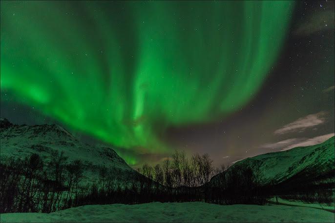Северное сияние в заполярной Норвегии. Northern Lights in Norway polar. (686x457, 74Kb)