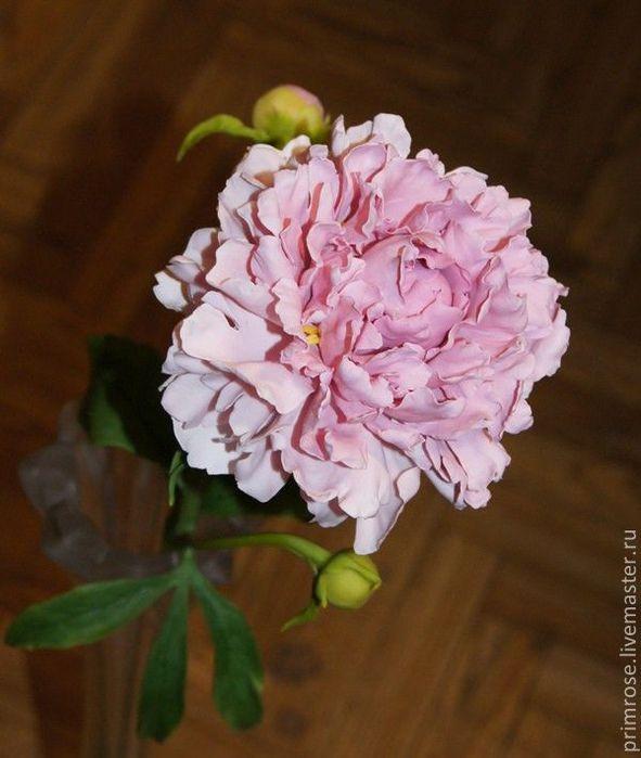 26a1342693-tsvety-floristika-pion-holodnyj-farfor-n4927 (591x700, 49Kb)