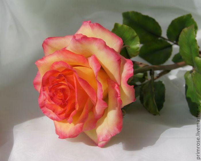 46f4007984-tsvety-floristika-krasavitsa-krita-roza-n2318 (700x560, 36Kb)