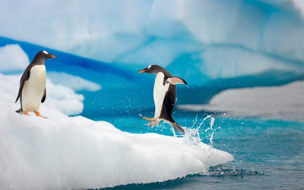 Антарктика тает намного быстрее, чем предполагали ученые