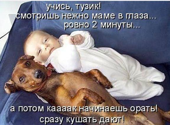 5016628__1_ (576x426, 52Kb)