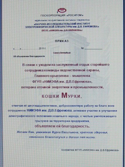 Муркин приказ (428x570, 133Kb)