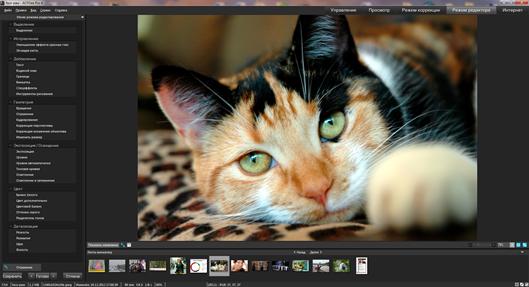 Как зеркально отразить фотографию в разных программах Фотографии
