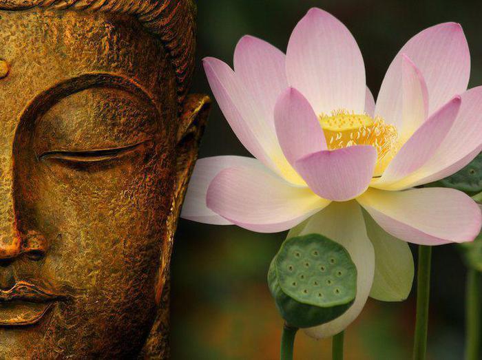 Будда и Лотос (700x523, 61Kb)