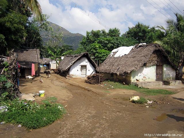 Индия, Тируваннамалай, 2012, 1 (640x480, 327Kb)