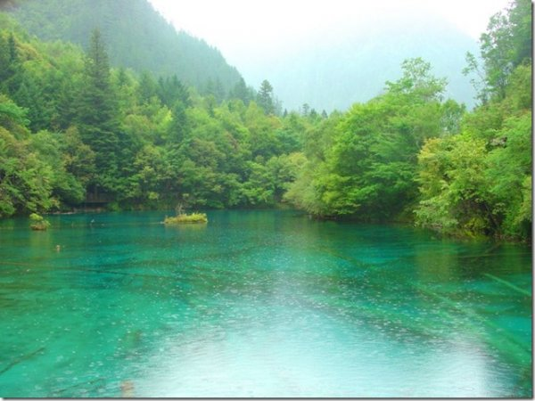 1324629798_rain_at_tiger_lake_3 (600x450, 55Kb)