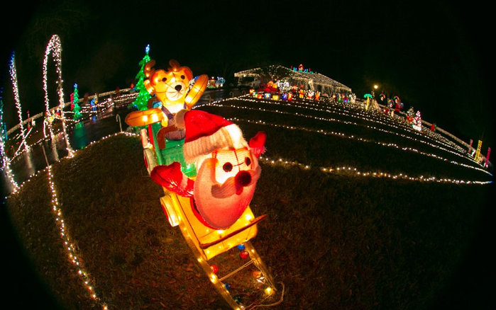 Экстравагантный рождественский свет