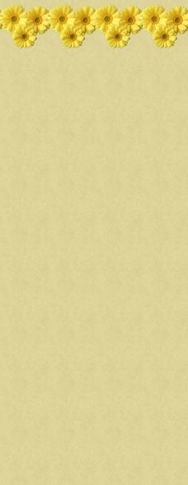 gelflow01 (272x700, 92Kb)