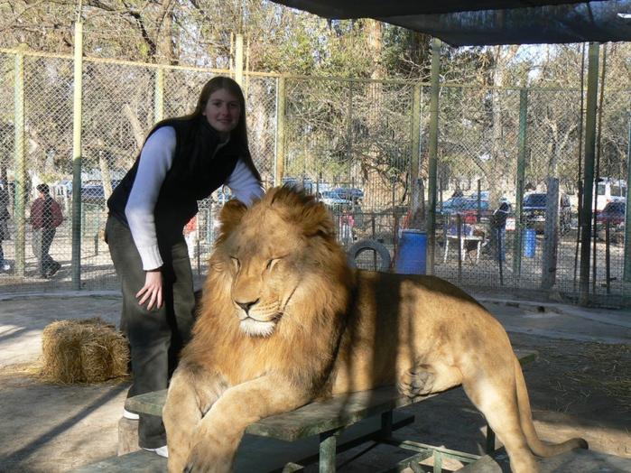 тактильный зоопарк аргентина город лухан 1 (700x524, 233Kb)
