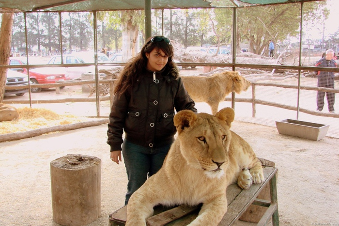 тактильный зоопарк аргентина город лухан 9 (700x466, 182Kb)