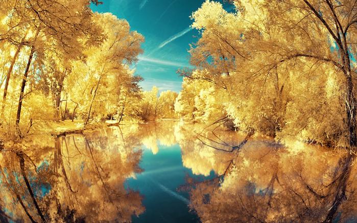 инфракрасные пейзажи фото 4 (700x437, 310Kb)