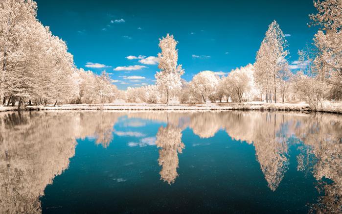 инфракрасные пейзажи фото 9 (700x437, 211Kb)