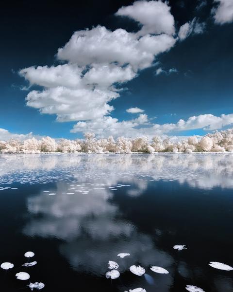 инфракрасные пейзажи фото 13 (480x600, 144Kb)