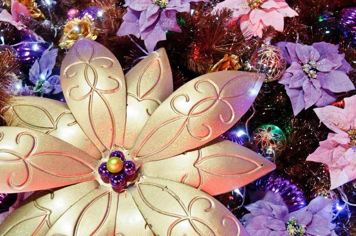 С наступающим Новым Годом и Рождеством. 38944