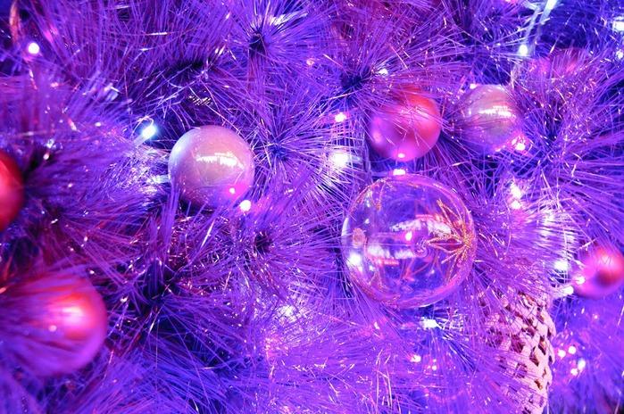 С наступающим Новым Годом и Рождеством. 86892