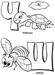 Превью черепаха шмель (511x700, 120Kb)