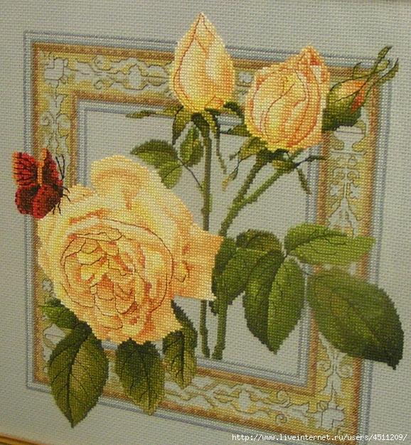 Желтые розы с бабочкой.