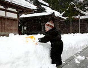 Морозы в Японии (310x240, 13Kb)