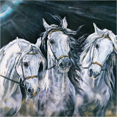 Русская тройка лошадей в
