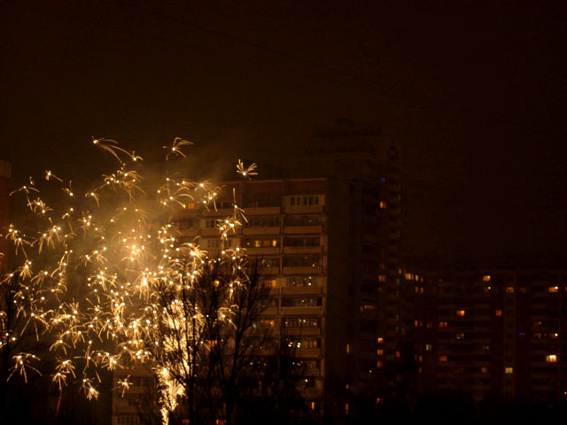 Новый год 2013 13 (640x480, 86Kb)
