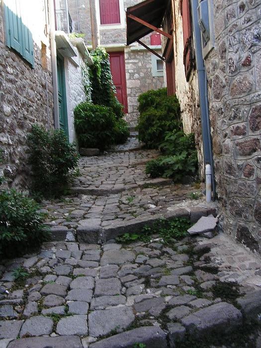 Остров Лесбос - Остров одетый в зелень сосен, оливковых деревьев и дубов. Часть 1 10028