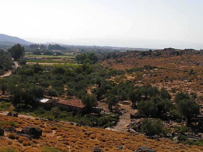 Остров Лесбос - Остров одетый в зелень сосен, оливковых деревьев и дубов. Часть 1 27799