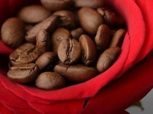Кофе сорта (300x224, 24Kb)
