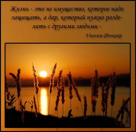 80107148_zakat_folkner_zhizn (446x433, 194Kb)