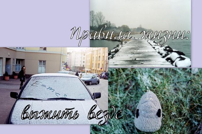 снег (700x466, 98Kb)