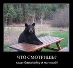 ������ _47_20110606_1964568430 (500x469, 141Kb)