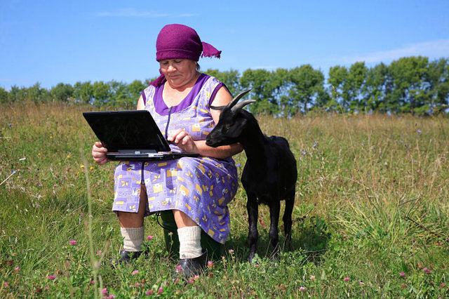 коза и комп с бабой (640x426, 98Kb)