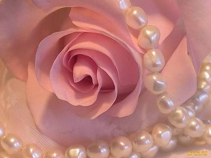 roses and pearls - photo #3