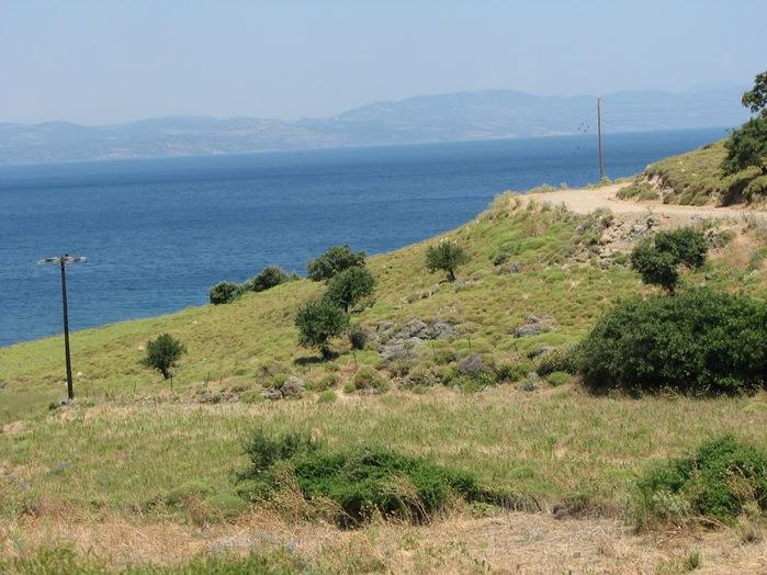 Остров Лесбос - Остров одетый в зелень сосен, оливковых деревьев и дубов. Часть 2 82514
