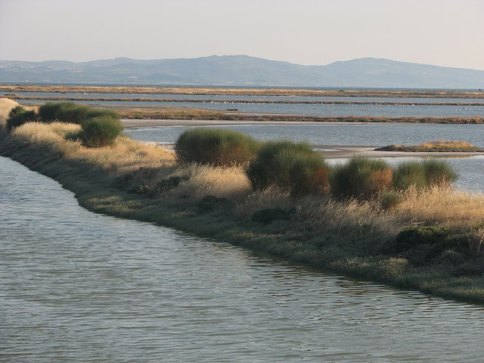 Остров Лесбос - Остров одетый в зелень сосен, оливковых деревьев и дубов. Часть 2 16375