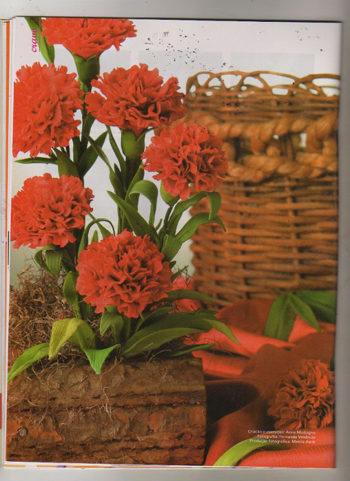 Anna Modugno Especial Flores n 1 024 (508x700, 428Kb)
