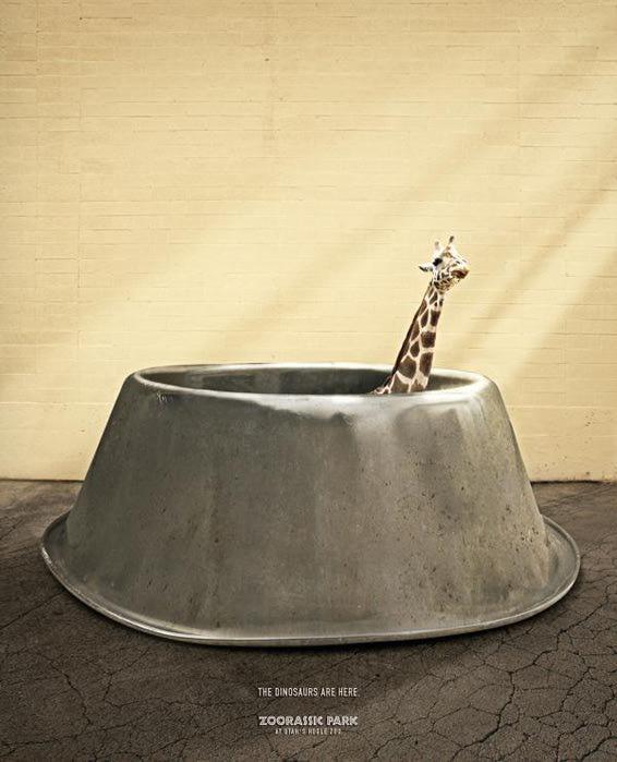 прикольная реклама зоопарка 4 (566x700, 45Kb)