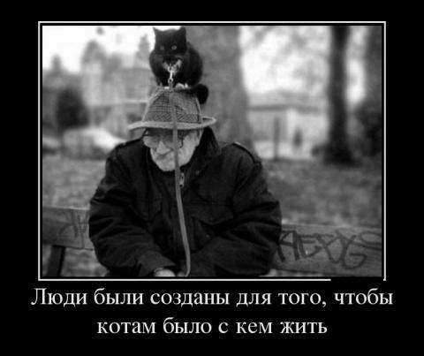 43442419_a-voobsche-lyudi-byili-sozdanyi-dlya-togo-chtobyi-kotam-byilo-s-kem-zhit (480x403, 23Kb)