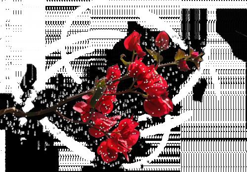 62704593_pn7 (500x348, 192Kb)
